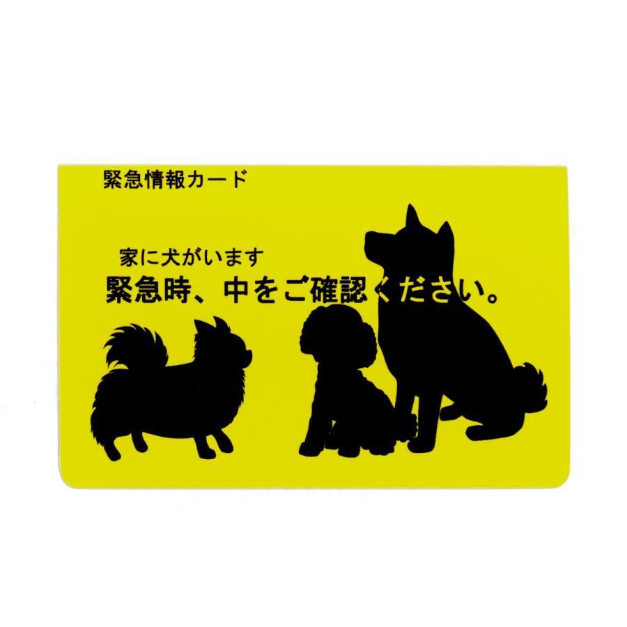 家に犬がいます 新作 2020A/W新作送料無料 人気 緊急情報カード 1枚入り クレジットカードサイズ