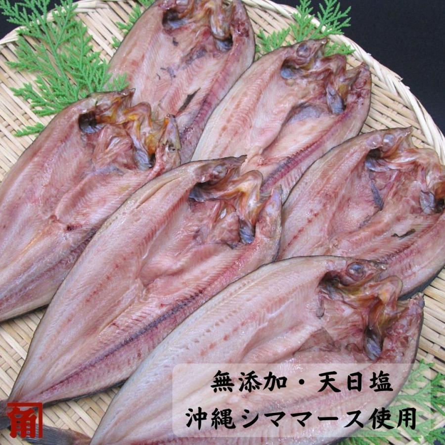 【送料無料】【業務用】干物 冷凍 無添加 真ほっけ10枚入 伊勢志摩  国産魚|kakusukeya