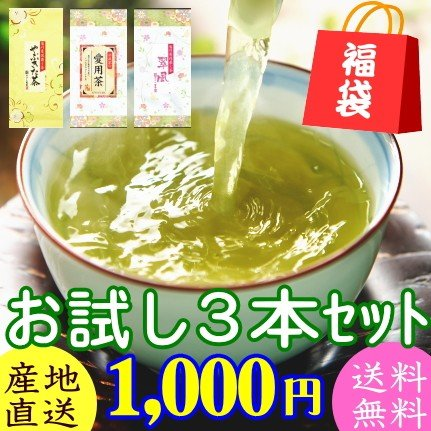 2021年産 お茶 緑茶 日本茶 業界No.1 煎茶 優先配送 お試しセット やぶきた茶 1000円ポッキリ セール 翠風 愛用茶 3本セット 送料無料