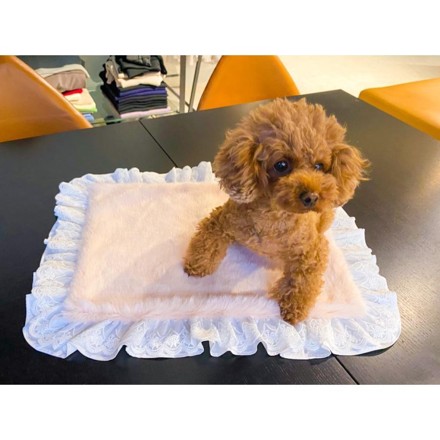 犬の服 専門店 犬服 ドッグウェア かわいい KALINA ペットグッズ ふわふわ 限定品 かりーな XSサイズ トイプードル マット カフェマット