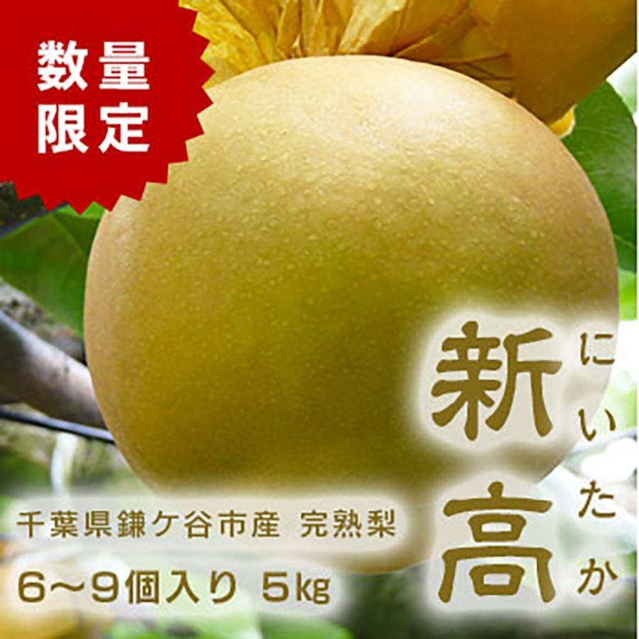 千葉県 鎌ケ谷 世界の人気ブランド 梨 かまたんのふるさと梨 5kg 高品質 6〜9個 完熟梨 新高