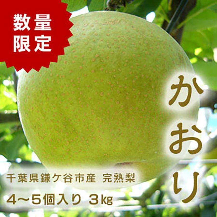 千葉県 鎌ケ谷 梨 かまたんのふるさと梨 4〜5個 完熟梨 本物◆ 予約販売品 3kg かおり