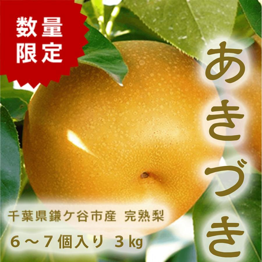 千葉県 鎌ケ谷 梨 かまたんのふるさと梨 オンラインショップ 3kg 完熟梨 6〜7個 評判 あきづき