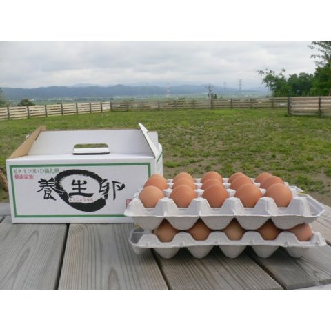 養生卵 未使用 M 30個化粧箱入1箱 050円 安心と信頼 送料込2