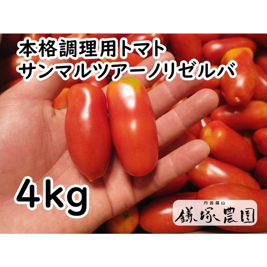 【鎌塚農園】調理用・加工用トマト【サンマルツァーノリゼルバ】露地栽培 伝統的本格派調理用トマト【4kg】|kamatsukafarm
