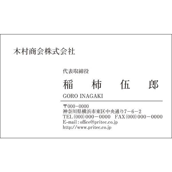 ネコポス ハイクオリティ 送料無料 新着 名刺作成 VCS-012 100枚入 シンプルデザイン