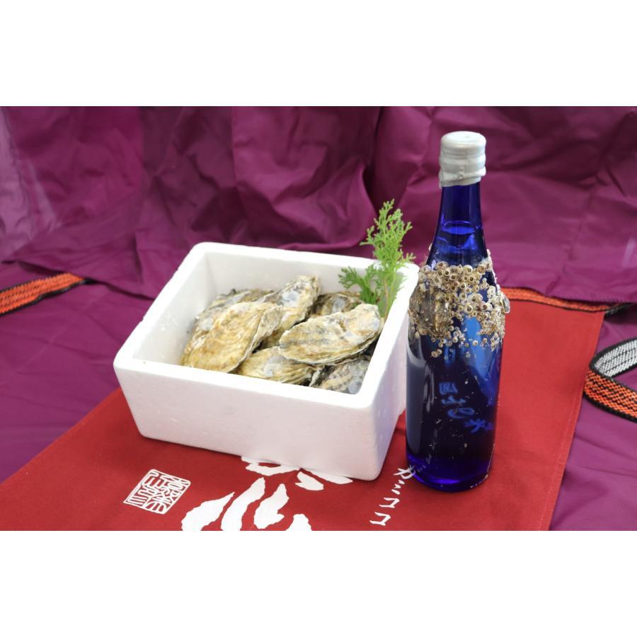 牡蠣と共に育つ酒2021(純米吟醸海中熟成酒1本+寄島産殻付牡蠣約1kg) 【12月下旬頃から蔵出し開始!】|kamikokoro