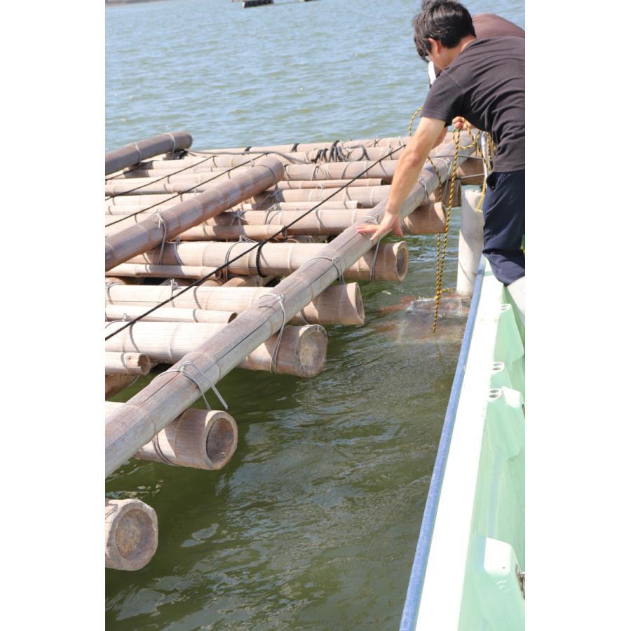 牡蠣と共に育つ酒2021(純米吟醸海中熟成酒1本+寄島産殻付牡蠣約1kg) 【12月下旬頃から蔵出し開始!】|kamikokoro|10