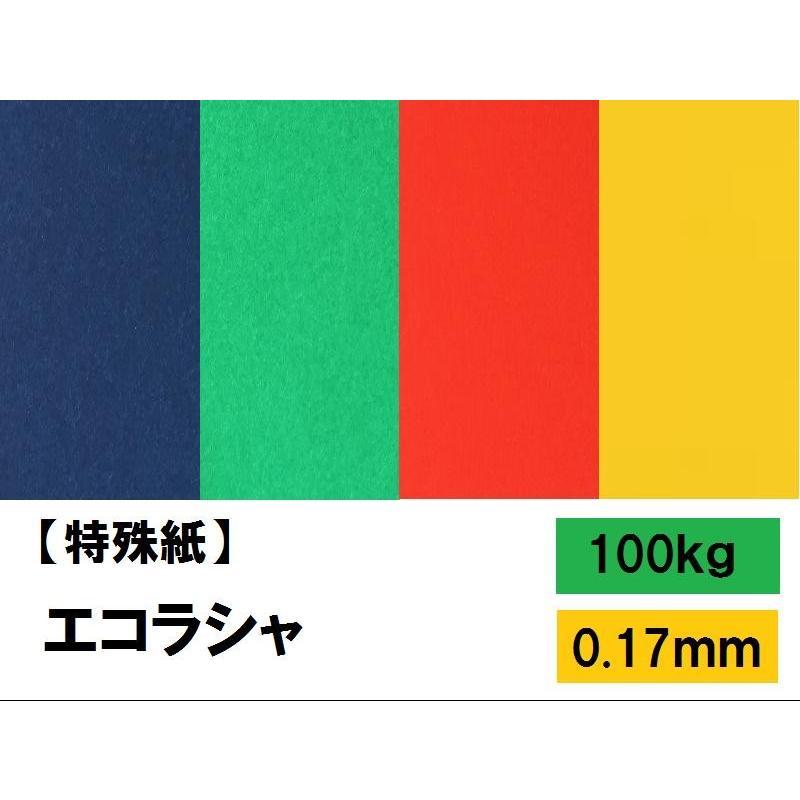 エコラシャ 100kg タイムセール 0.17mm 選べる4サイズ A3 B5 (訳ありセール 格安) ファンシーペーパー カラーペーパー B4 A4