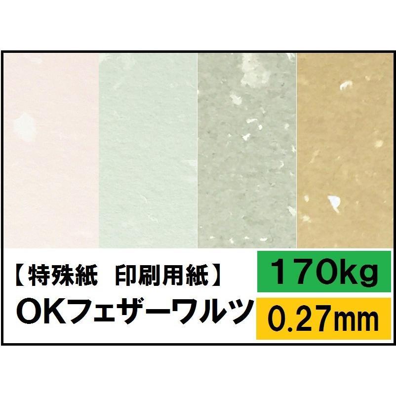 OKフェザーワルツ 170kg 豪華な 0.27mm 選べる9色 4サイズ 祝日 A4 A3 B4 ファンシーペーパー B5