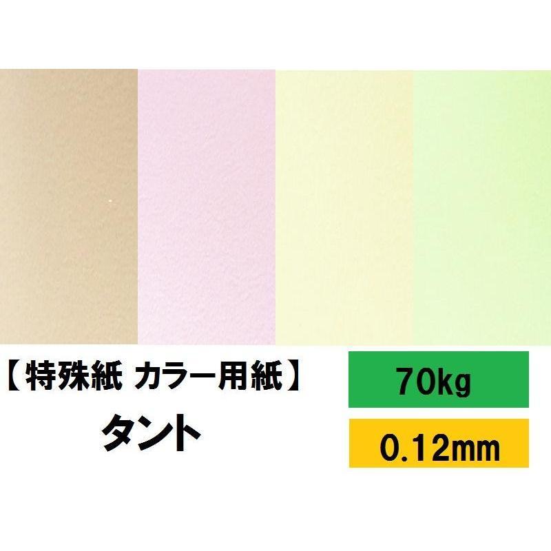 品質検査済 TANT タント 70kg 0.12mm 選べる131色 4サイズ 希少 B4 A3 B5 ファンシーペーパー A4