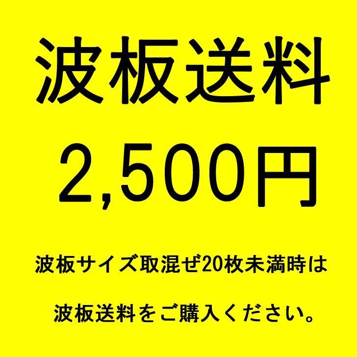 アイリスシンヨー 波板運送費2,500円 PayPay残高払い不可|kanaonisky|02