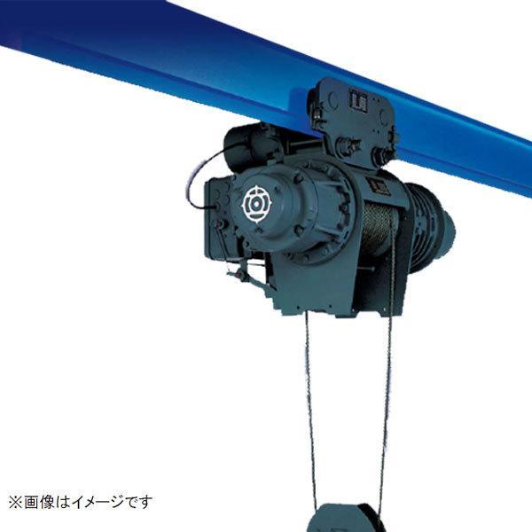 50000-466 日立 ホイスト 1/2HM-T65 V型シリーズ 懸垂 高揚程