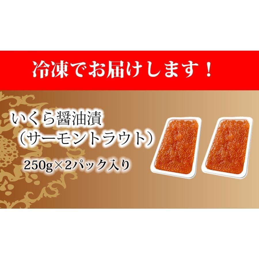 いくら イクラ 醤油漬 ( サーモントラウト 卵 ) 500g(250g×2パック入り) / 北欧サーモン いくら イクラ 小粒 海鮮 丼 手巻き|kanipara|12