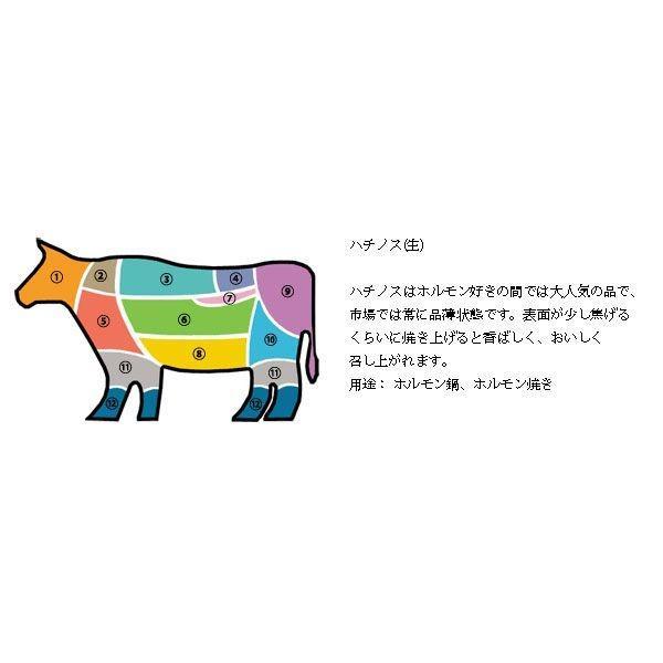 [凍]牛ハチノス約1kg-チリ産/韓国焼肉/ホルモン|kankoku-ichiba|05
