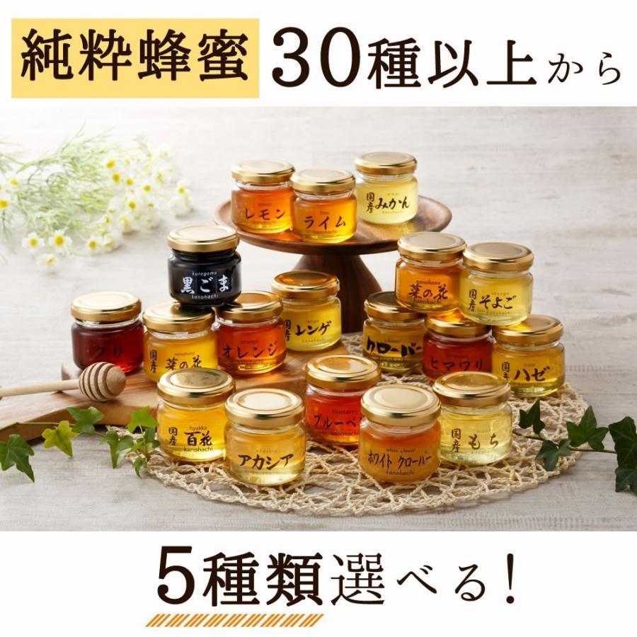 蜂蜜(はちみつ)ハニーお試しセット 送料無料 国産、外国産の純粋蜂蜜30種以上(1つ90g)から5つ選べる お得なはちみつ5点セット 蜂蜜専門店かの蜂 kanohachi 11