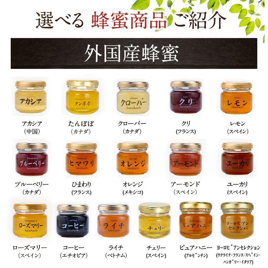 蜂蜜(はちみつ)ハニーお試しセット 送料無料 国産、外国産の純粋蜂蜜30種以上(1つ90g)から5つ選べる お得なはちみつ5点セット 蜂蜜専門店かの蜂 kanohachi 13