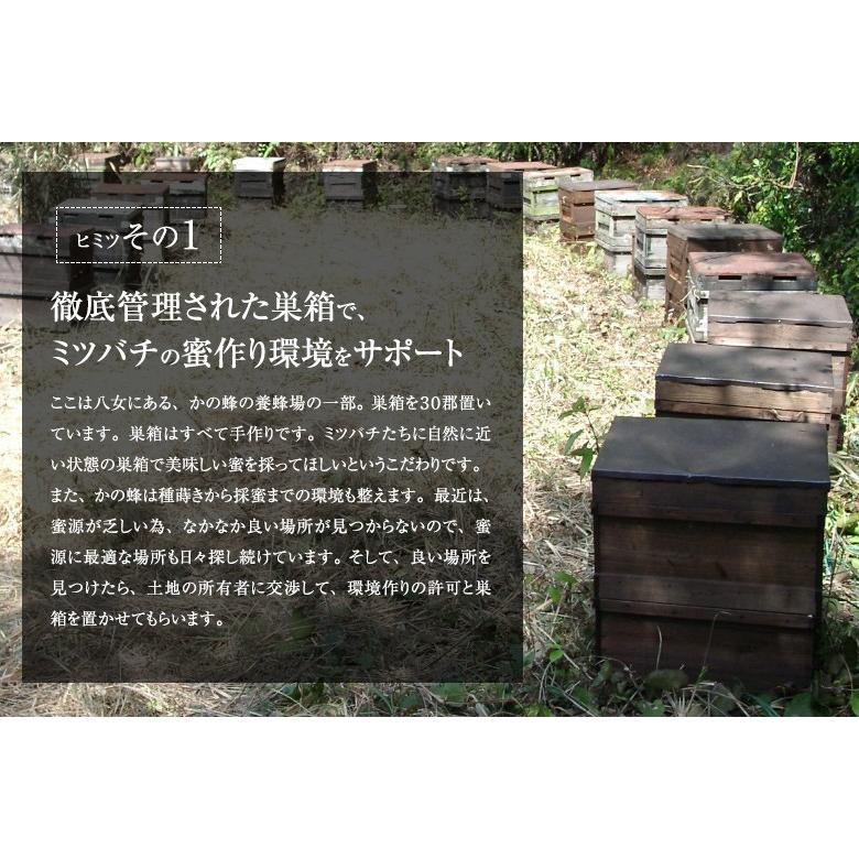 蜂蜜(はちみつ)ハニーお試しセット 送料無料 国産、外国産の純粋蜂蜜30種以上(1つ90g)から5つ選べる お得なはちみつ5点セット 蜂蜜専門店かの蜂 kanohachi 05