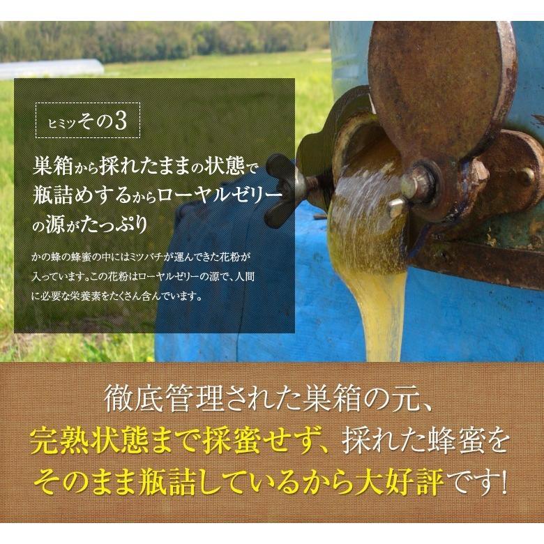 蜂蜜(はちみつ)ハニーお試しセット 送料無料 国産、外国産の純粋蜂蜜30種以上(1つ90g)から5つ選べる お得なはちみつ5点セット 蜂蜜専門店かの蜂 kanohachi 07