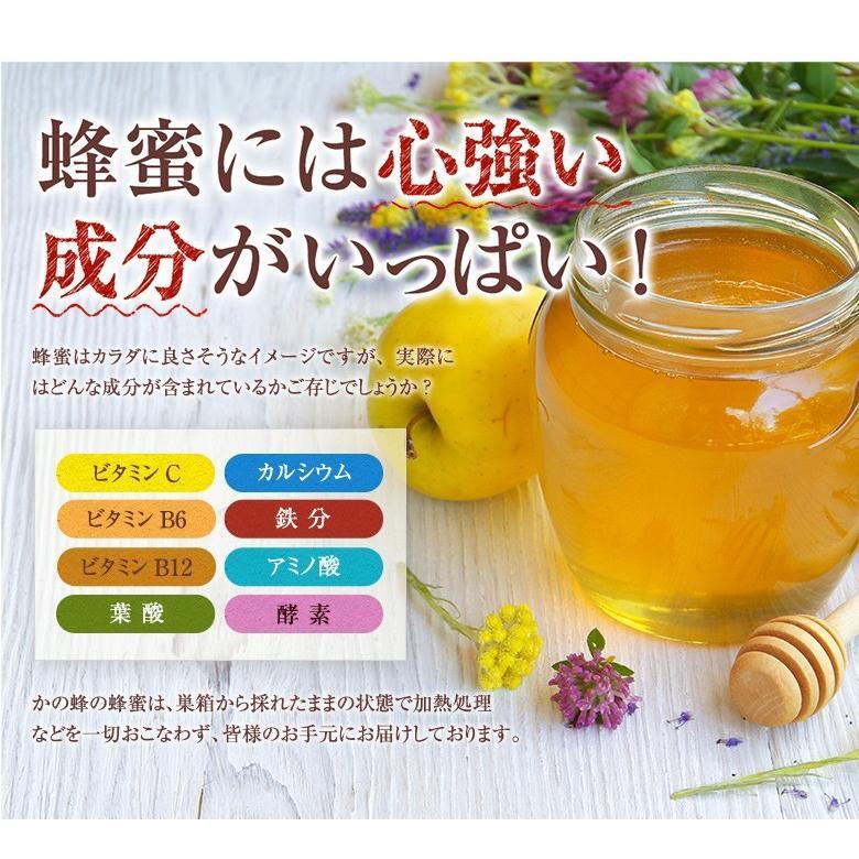 国産 百花はちみつ 国産蜂蜜 とんがり容器 1000g  はちみつ専門店 かの蜂|kanohachi|08
