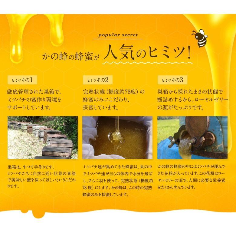 母の日 ギフト国産蜂蜜(れんげ・国産はちみつ・百花蜜)250g×3本 国産蜂蜜 はちみつ 蜂蜜専門店 かの蜂 kanohachi 08