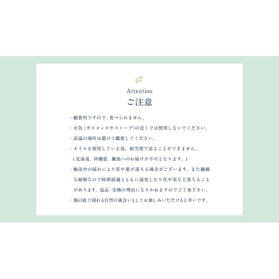 母の日ギフト 蜂蜜3種とハーバリウムギフトセット 送料無料 はちみつ専門店 かの蜂|kanohachi|08