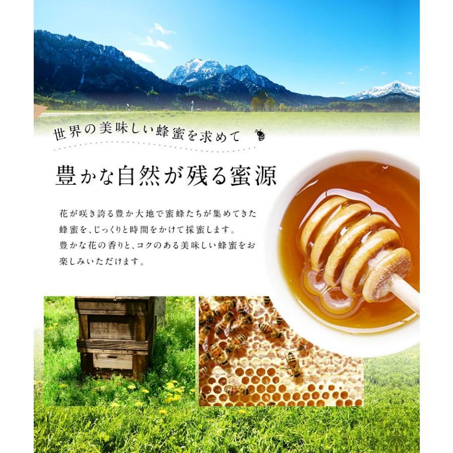 リニューアル!ゴールデン純粋はちみつ1kg 1,000g コクのあるブレンド蜂蜜 業務用にも 蜂蜜専門店 かの蜂 kanohachi 03