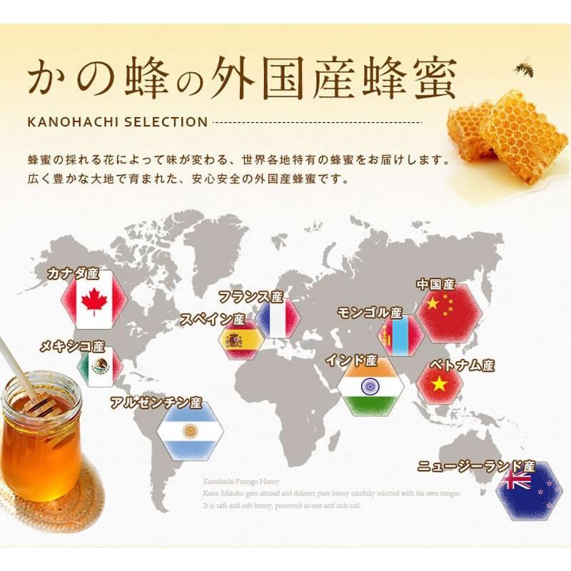 リニューアル!ゴールデン純粋はちみつ1kg 1,000g コクのあるブレンド蜂蜜 業務用にも 蜂蜜専門店 かの蜂 kanohachi 06