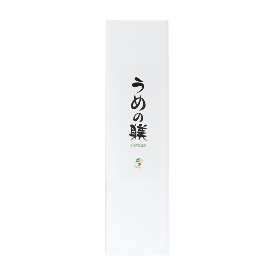 うめの躾 kanpouinai 03