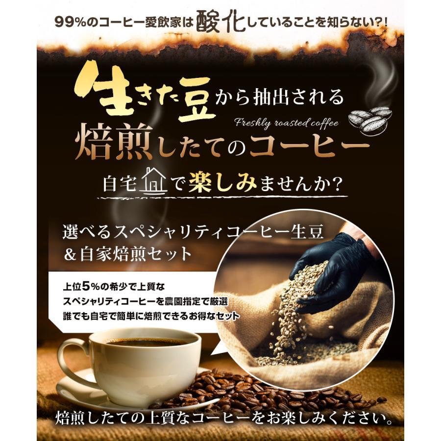 コーヒー豆 選べるコーヒー豆 3種類合計300g  お試しセット|kariomon
