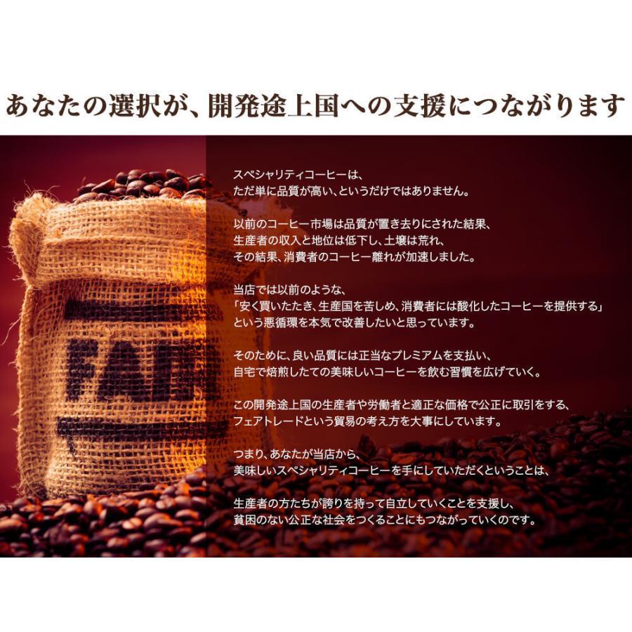 コーヒー豆 選べるコーヒー豆 3種類合計300g  お試しセット|kariomon|16