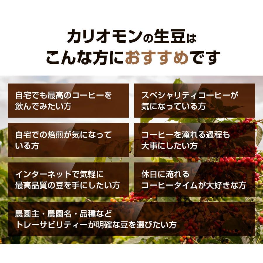 コーヒー豆 選べるコーヒー豆 3種類合計300g  お試しセット|kariomon|07