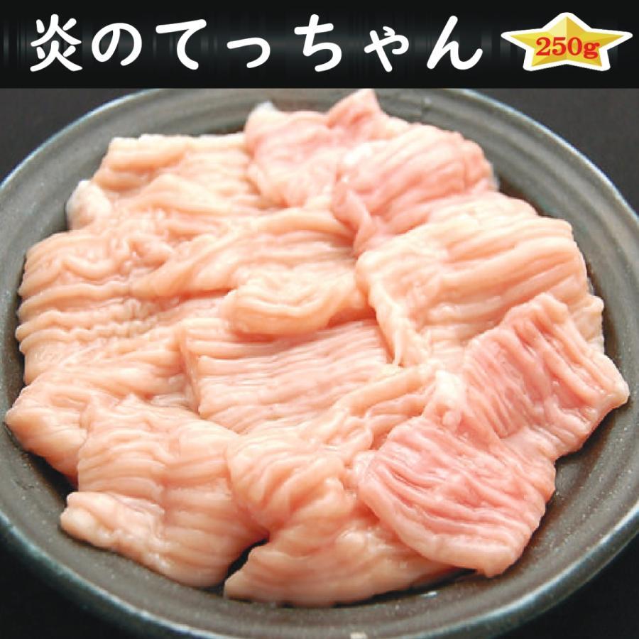 焼肉 BBQ バーベキュー ホルモン タレ漬け てっちゃん 250g  karubiann