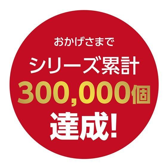 生カステラmini(プレーン) 【冷凍】GIFT お取り寄せ|kashuen-moricho|03