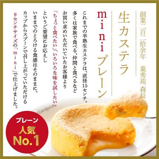 生カステラmini(プレーン) 【冷凍】GIFT お取り寄せ|kashuen-moricho|04