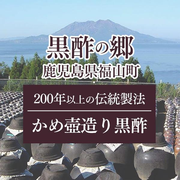 母の日 プレゼント ギフト  ( 健康 おしゃれ ) 飲む酢 3本 セット MDEB|kasutera1ban|09