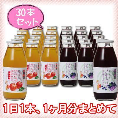 【たっぷり30本】 りんごジュース&ブルーベリージュース 180ml×各15本(30本セット) kawaba