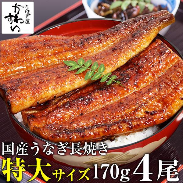 4本セット 特大 国産 うなぎ 蒲焼き 170g 鰻 ウナギ 蒲焼