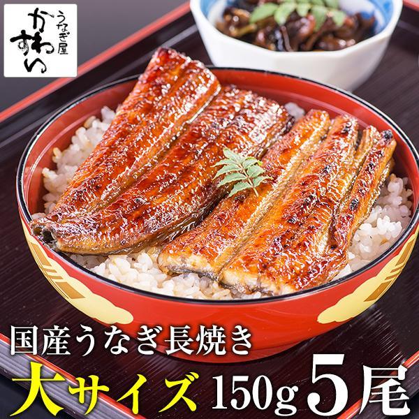 国産 大サイズ うなぎ 蒲焼き 150g-169g×5本 鰻 ギフト 蒲焼 うなぎ蒲焼 送料無料
