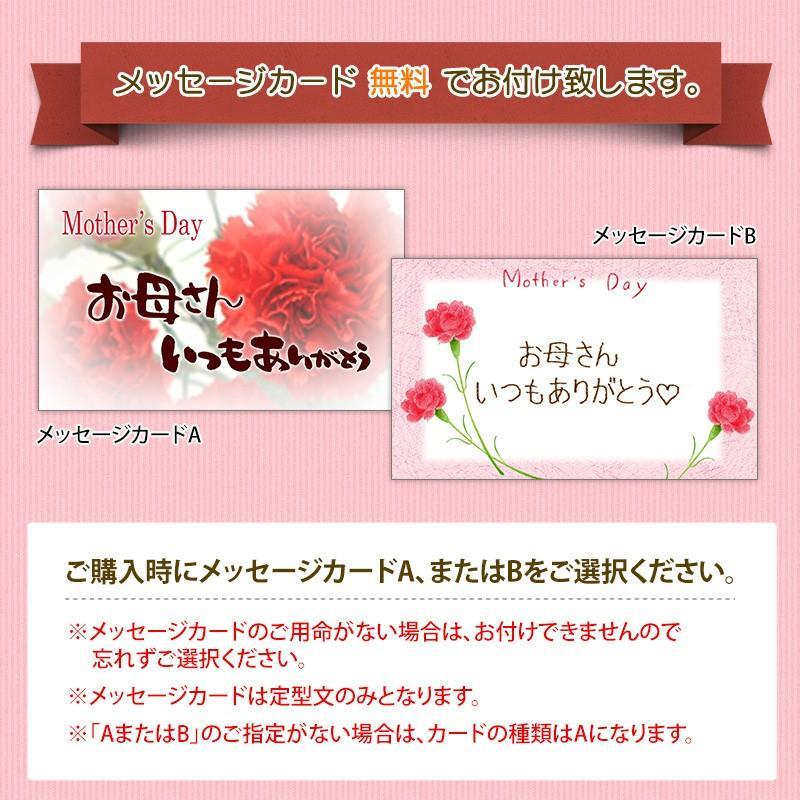 母の日限定ギフト プレゼント [紀州五十五万石+造花セット] kawamotokk 04