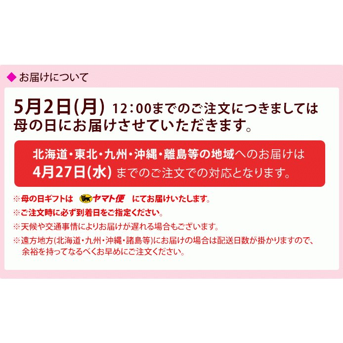 母の日限定ギフト プレゼント [紀州五十五万石+造花セット] kawamotokk 05