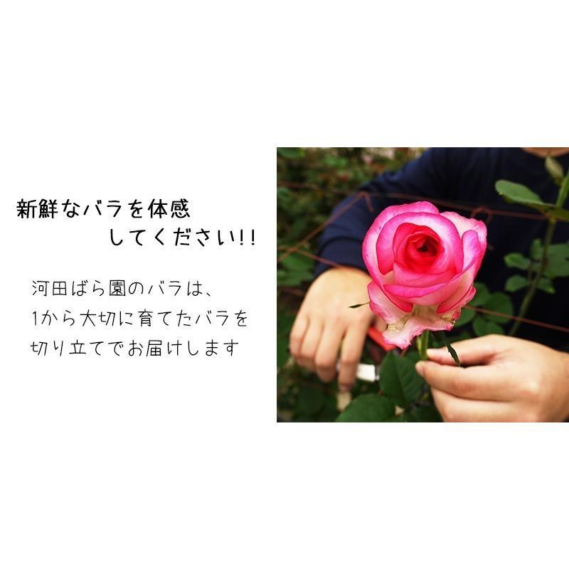 花 誕生日プレゼント 女性 男性 母 バラ フラワーアレンジメント 結婚記念日 退職祝い 退院祝い ギフト 送料無料 20代 30代 40代 50代 60代 70代 80代 90代|kawata-baraen|05