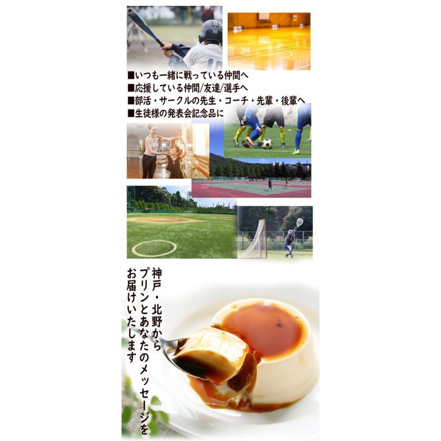 敬老の日 ミルク プリン6個入 スポーツ全13種 ラッピング付|kazamidorihonpo|02