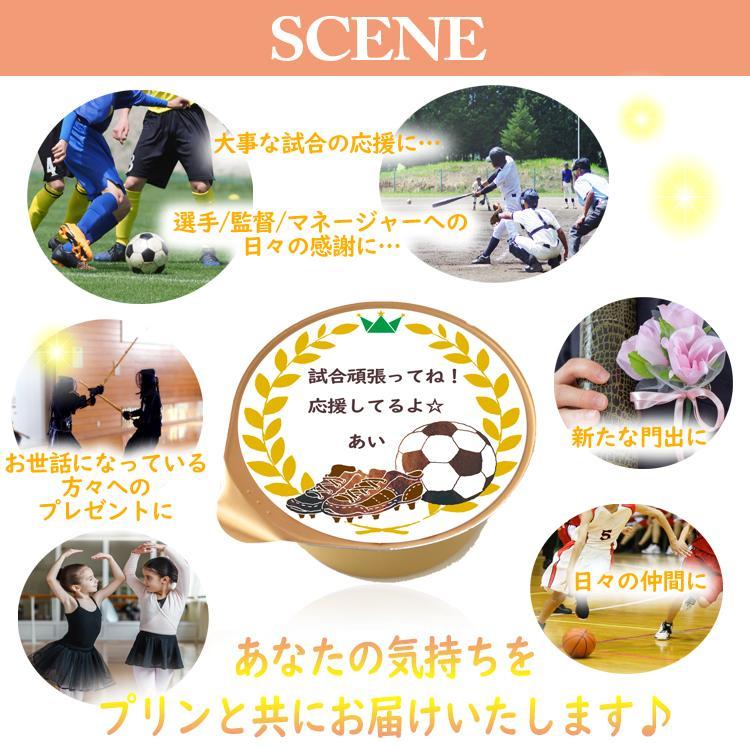 敬老の日 ミルク プリン6個入 スポーツ全13種 ラッピング付|kazamidorihonpo|05