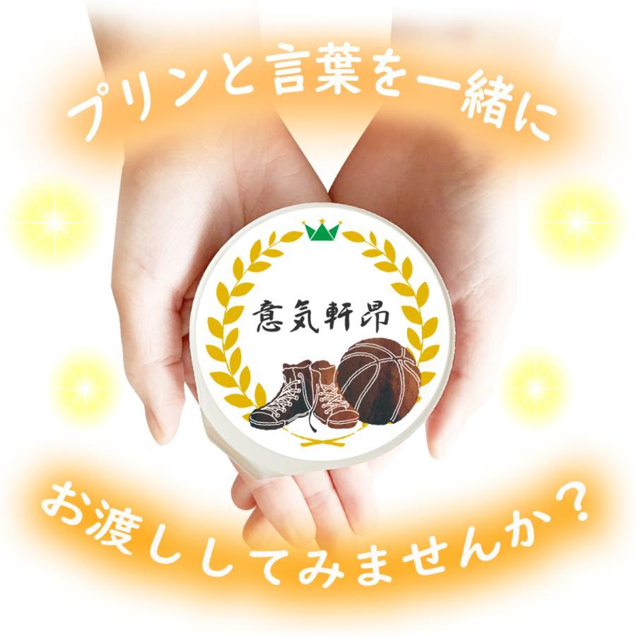 敬老の日 ミルク プリン6個入 スポーツ全13種 ラッピング付|kazamidorihonpo|06