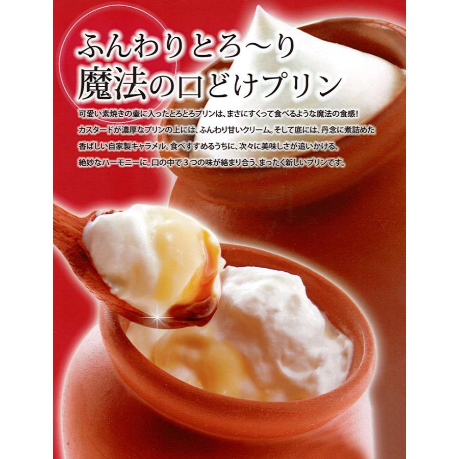 神戸スイーツセット 魔法の壷プリン4個入 風見鶏チーズケーキ6個入 冷凍 |kazamidorihonpo|06