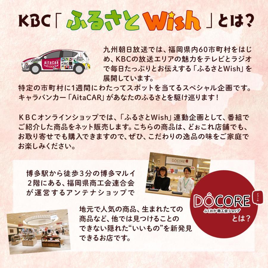 DOCORE福岡【八女・広川】の新定番詰め合わせ|kbcshop|02