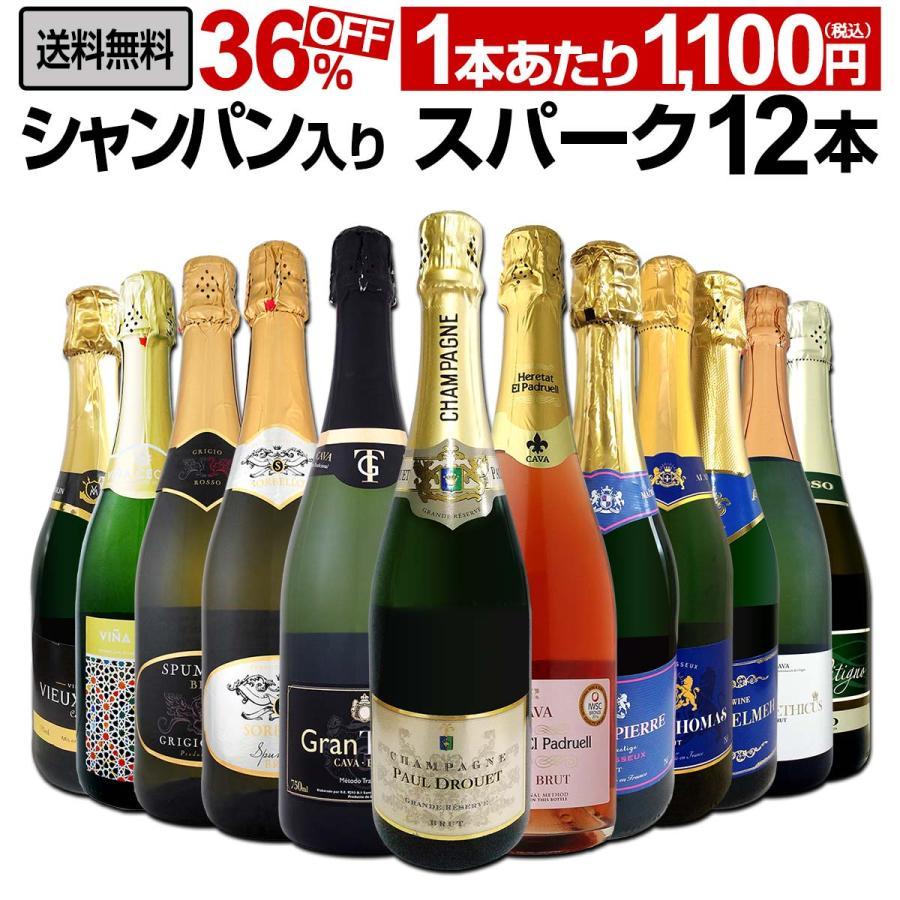 シャンパン スパークリングワイン 白 セット イタリア 大放出セール フランス スペイン wine 辛口 第16弾 750ml 捧呈 set sparkling 12本