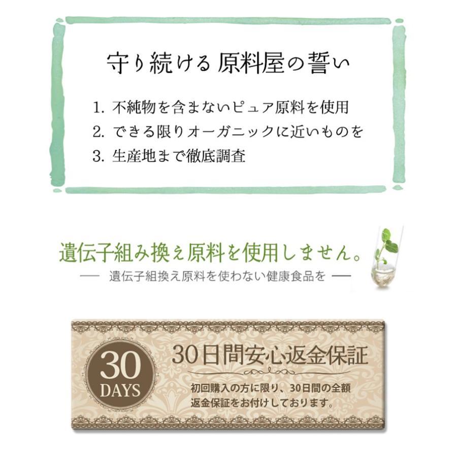 健康食品の原料屋 有機 オーガニック 桑の葉 青汁 国産 鹿児島県 粉末 約33日分 100g×1袋 ke28 12