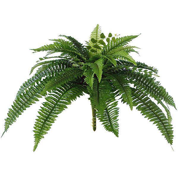 好評 玉シダ 最安値 ブッシュ 全長38cm ボストンファーン 人工観葉植物 インテリアグリーン フェイクグリーン 造花 即納最大半額 タマシダ